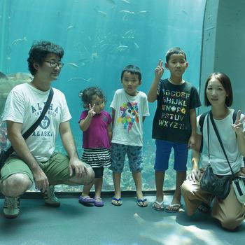 イルカに触りたい!! 静岡市 N.Y 様